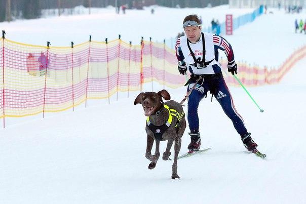 В эти выходные на лыжном стадионе «Тирвас» прошел чемпионат Мурманской...