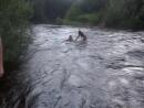 Сплав по реке Мда. Новгородская область