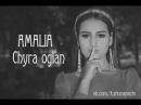 Amalia - Chyra Oglan new music clips 2017