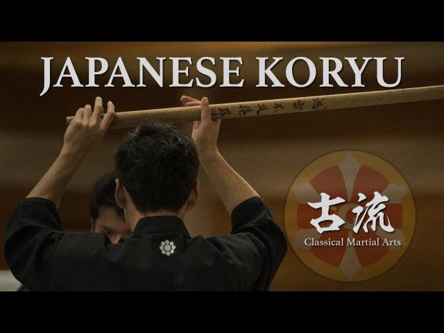 Martial Arts Jujutsu Kenjutsu Iaido Bujutsu in Japan Tokyo Highlights 2017