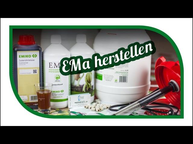 Effektive Mikroorganismen 💦 Was ist EMa? 💦 EMa herstellen 💦 Biologisch dynamischer Garten