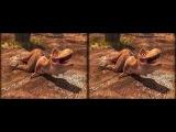 Pangea - The Neverending World - #3D #SBS #Cardboard