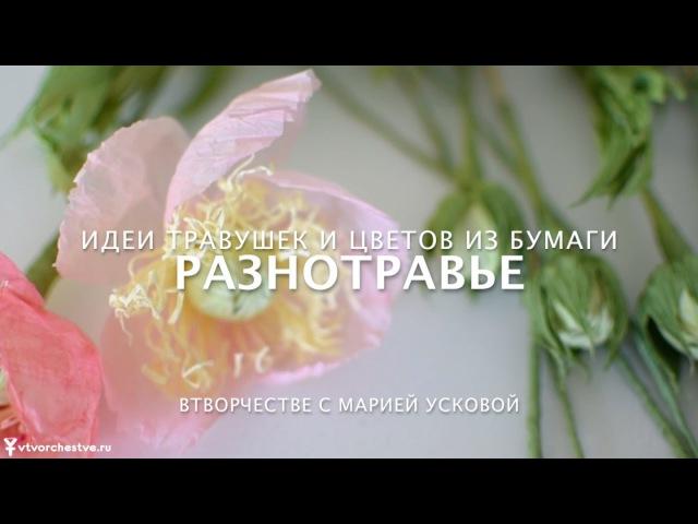Разнотравье идеи цветов и трав в букетах из конфет