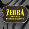 Академия боевых искусств Зебра