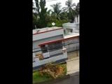#Индия#Калькутта#начался сезон дождей#Видео от Надежды#