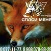 """Приют диких животных """"СПАСИ МЕНЯ"""", Челябинск"""