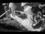 66. Девятый круг Deveti krug 1960 Югославия
