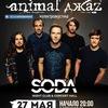 27.05 | Animal ДжаZ | Великий Новгород