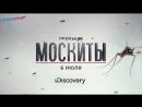 Москиты - трейлер передачи Discovery Channel в Full HD 2017