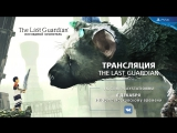 «The Last Guardian. Последний хранитель» в прямом эфире PlayStation Россия