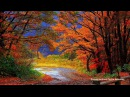 Музыка для души.Осенняя грусть - Эдгар Туниянц.