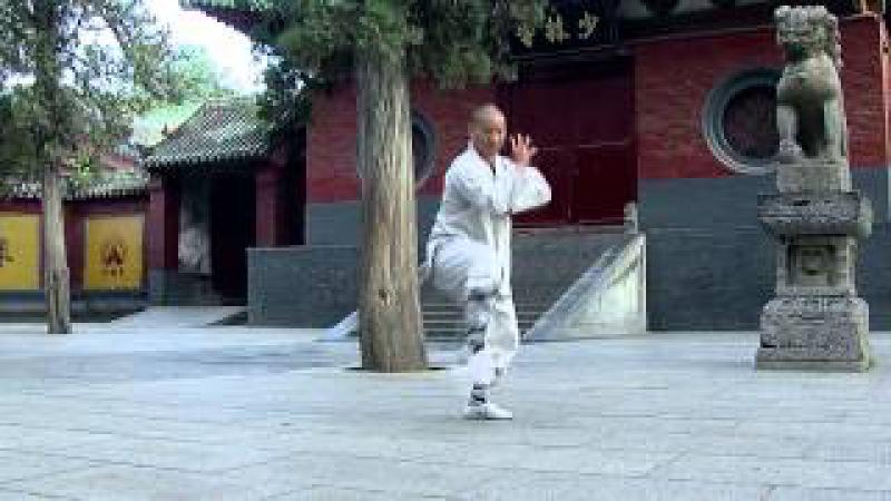 Dragon Gate shaolin kungfu