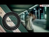 FLER feat. SHINDY &amp BUSHIDO - ATTITUDE REMIX VIBE
