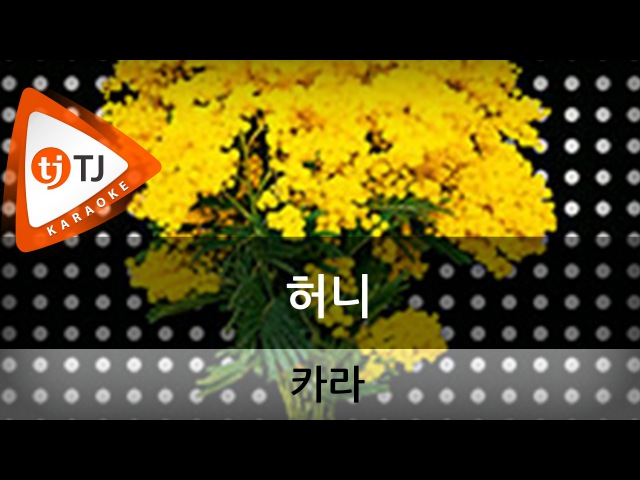Honey 허니_KARA 카라_TJ노래방 (Karaoke/lyrics/romanization/KOREAN) кфк