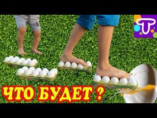 Ходим по сырым яйцам! Walking on Eggs - Cool Science Experiment#детский канал