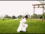 Wudang Five Animal Qi Gong (Crane)