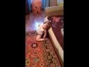 а моя доча танцует тверк в 1 годик и 3 месяцаа тебе слабо