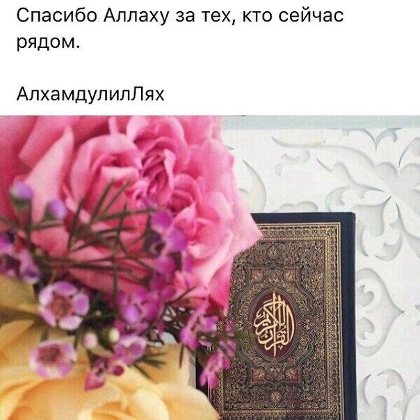 Марта для, картинка спасибо аллаху