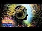 Тайны Чапман. Технология массового психоза (31.10.2016) HD