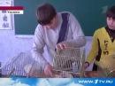 Чипсы и сухарики фаст фуд оружие массового уничтожения Опыт на крысах в украинской школе