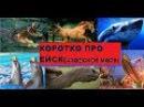 Кратко про г.Ейск, Азовское море (анонс путешествия)