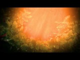 Футаж для видеомонтажа начала фильма: Джунгли