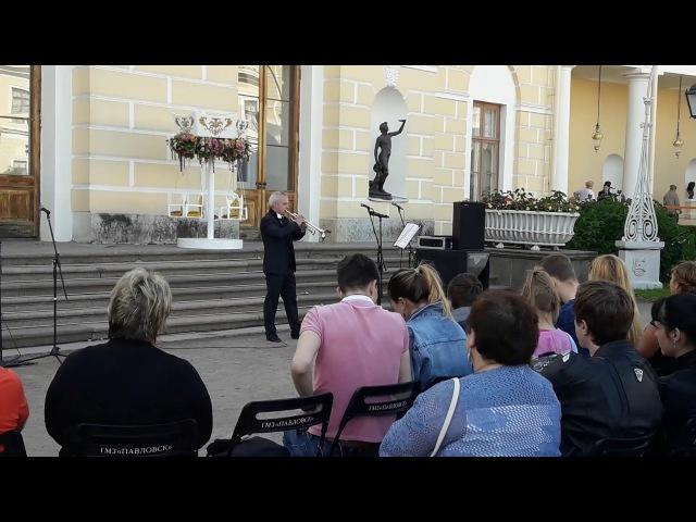 Павловск 23.07.2017, выступление Михаила Хасина