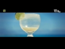 Darius Finaly — Tropicali VOX Music TV Польша