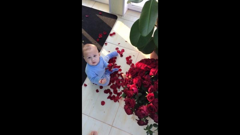 Дане 9 месяцев!). Моим розам хана🌹😖😖!!