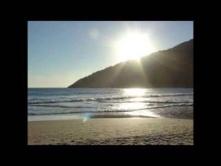 Paz De Um Novo Dia (Gustavo Sauer/Haline Avelar/Carlos Junior)