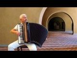 TORNA A SURRIENTO - Italian accordion music Fisarmonica Italiana - Canzone Napoletana instrumentala
