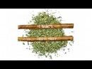 The Game - Two Blunts (420) ft. Wiz Khalifa Lorine Chia