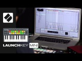 Novation  How to produce and perform a track in Ableton