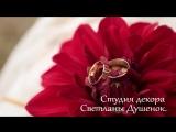 Выездная церемония наших счастливых молодожёнов Сергея и Мариночки!!! Видео Максим Кривошеев.