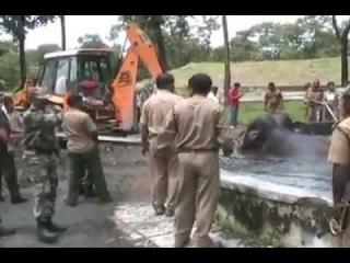 Военные спасают слонов. Трогательное видео с неблагодарным концом