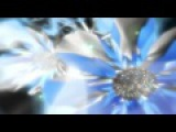 Любовь Ангела. Aeoliah - Angels of Love