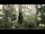 Liten barbaktur i skogen (Bareback in the woods)