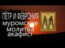 Молитва о семье. Акафист Петру и Февронии Муромским день семьи любви и верности ...