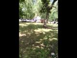 Сериал «Лагерь