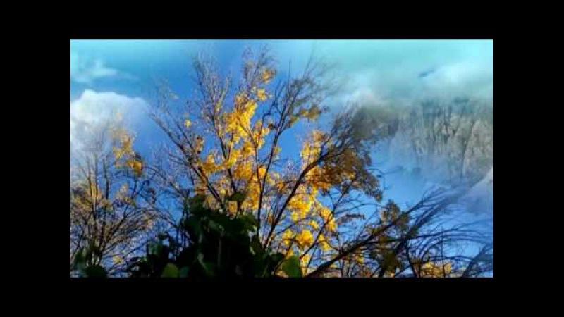 TALKING WITH WIND - EDELIS (Trò Chuyện Cùng Gió Núi Mây Ngàn)