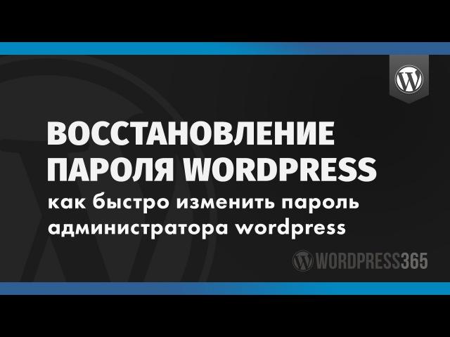 Восстановление пароля Wordpress: быстрый способ изменить пароль админа в PhpMyAdmin