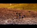 Таинственная Россия Патомский кратер. Самое загадочное место планеты