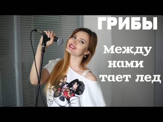 Грибы Между нами тает лёд кавер Анжелика Шатулина гитара Полина Седова