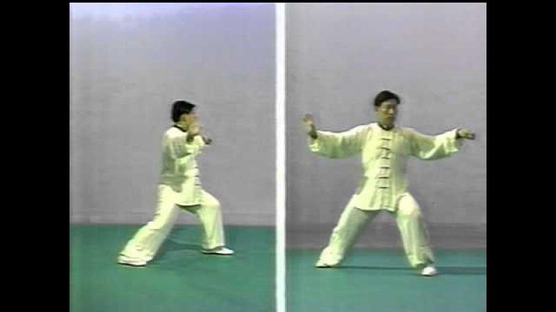 80年代後期 陳小旺老師 Chen Xiaowang 陳氏太極拳老架一路(略) Chen Taijiquan