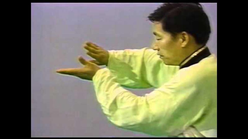 80年代後期 陳小旺老師 Chen Xiaowang 陳氏太極拳 基本纏絲功・歩法 Silk Reeling