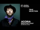 Андрей Партизан Agoria - Baboul Hair Cuttin (Gui Boratto remix)