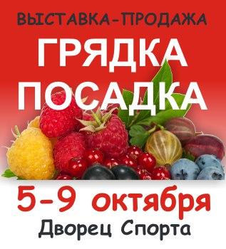 https://pp.vk.me/c637722/v637722488/e628/IgeJ2Eicv7A.jpg