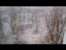 Огромные хлопья снега в Луганске. 18 марта 2017