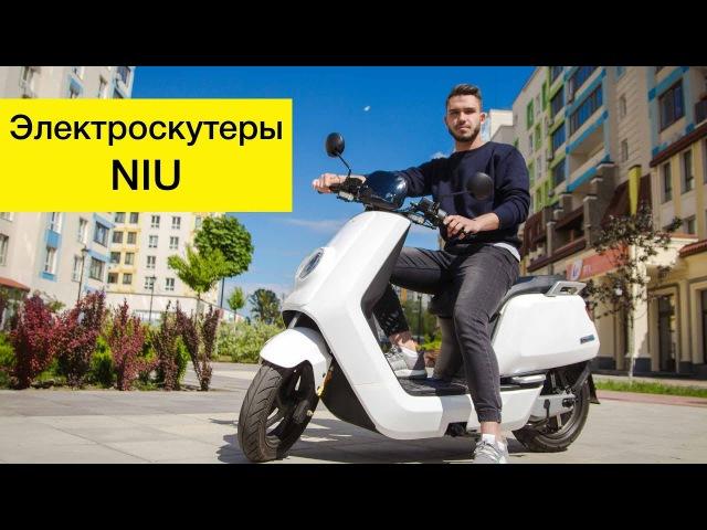 Электроскутер Niu M1 Pro и Niu N1 Sport - тест и обзор электротранспорта