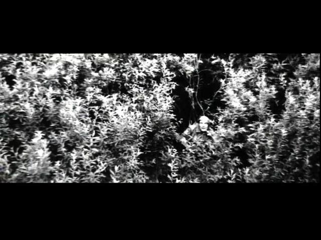 Евгений Град - А зори здесь тихие